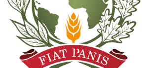 logo-FAO-Model-520x240
